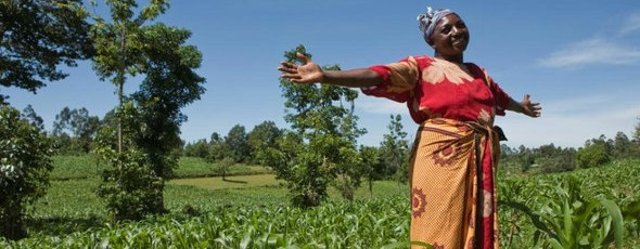 women-farming-in-africa